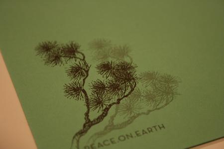 blog-photos-11-11-08-052