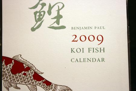 blog-photos-11-11-08-085