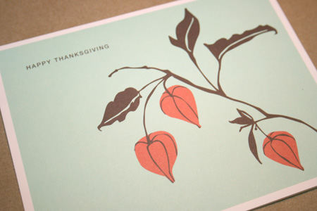 Madison Park boxed Thanksgiving cards