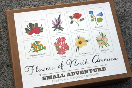 Small Adventure Flowers Notecards